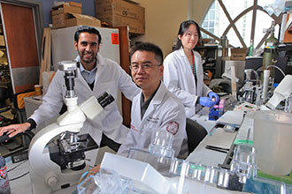 Dr. Zhiping Zhou, center, manages Dr. Souweidane's pediatric neuro-oncology lab