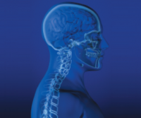Spine Health: Help Is on the Way for Neck and Back Pain