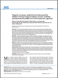 Magnetic Resonance-Guided Focused Ultrasound for Ablation of Mesial Temporal Epilepsy Circuits: Modeling and Theoretical Feasibility of a Novel Noninvasive Approach
