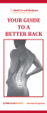 Your Guide to a Better Back